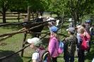 Farma Abeland v Lozorne