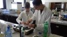 Prírodovedecké experimenty pre stredoškolákov